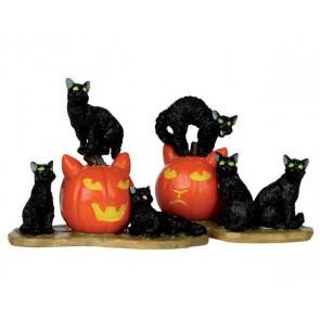 Lemax Halloween Cats