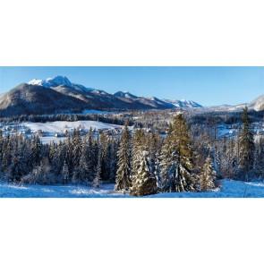 My Village Background Cloth Winter Village Xl 300X150Cm